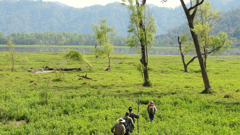 Parque Provincial Laguna Pintascayo